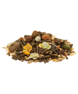 Cuni fit muesli graine